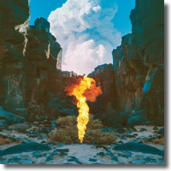 Cover: Bonobo - Migration