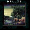 Cover:  Fleetwood Mac - Tango In The Night