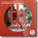 Cover:  Jay Frog & DJ Blackstone - Somebody's Watching Me
