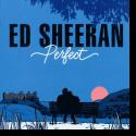 Cover:  Ed Sheeran - Perfect