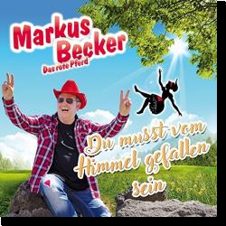 Cover: Markus Becker - Du musst vom Himmel gefallen sein