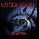 Cover:  Eisregen - Fleischfilm
