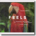 Cover: Calvin Harris feat. Pharrell Williams, Katy Perry & Big Sean - Feels