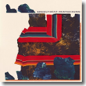 Cover:  Grizzly Bear - Painted Ruins
