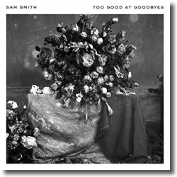 Cover: Sam Smith - Too Good At Goodbyes
