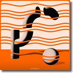 Cover: Hookworms - Microshift