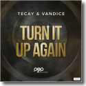 Cover:  TeCay & Vandice - Turn It Up Again
