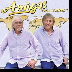 Cover: Amigos - 110 Karat