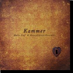 Cover: Malte Vief & HeavyClassic Ensemble - Kammer