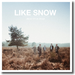 Cover: Like Snow - Beauty & Fear