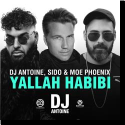 Cover: DJ Antoine, Sido & Moe Phoenix - Yallah Habibi