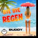 Cover:  Buddy - Bye Bye Regen