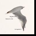 Cover:  Milian Otto - Wahnwitz und Gelegenheit