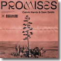 Cover:  Calvin Harris feat. Sam Smith - Promises