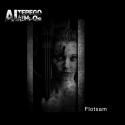 Cover:  Al Terego & The Hi-Q's - Flotsam