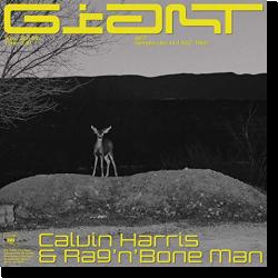 Cover: Calvin Harris & Rag'n'Bone Man - Giant