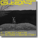 Cover: Calvin Harris & Rag'n'Bone Man - Giant