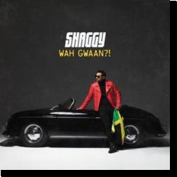 Cover: Shaggy - Wah Gwaan?!