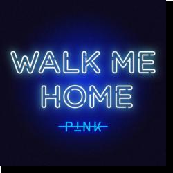 Cover: P!nk - Walk Me Home
