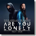 Cover:  Steve Aoki & Alan Walker feat. ISÁK - Are You Lonely