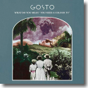 Cover:  Gosto - What Do You Mean 'You Need A Colour TV'