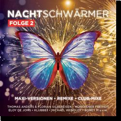 Cover: Nachtschwärmer Folge 2 - Various Artists