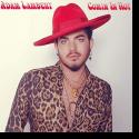 Cover: Adam Lambert - Comin In Hot
