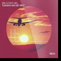 Cover:  Big N feat. Lika - Wir fliegen um die Welt