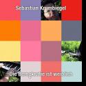 Cover:  Sebastian Krumbiegel - Die Demokratie ist weiblich