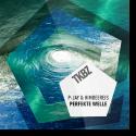 Cover: P-Jay & HimbeerE!s - Die Perfekte Welle 2.0