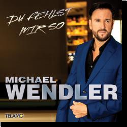 Cover: Michael Wendler - Du fehlst mir so