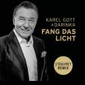 Cover:  Karel Gott & Darinka - Fang das Licht (Stereoact Remix)