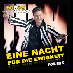 Cover: Christian Sommer - Eine Nacht für die Ewigkeit