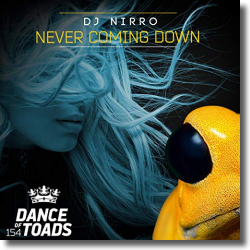 Cover: DJ Nirro - Never Coming Down
