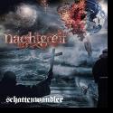 Cover:  Nachtgreif - Schattenwandler