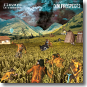 Cover:  Flowers in Concrete & Dim Prospects - Split
