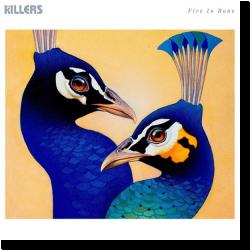Cover: The Killers - Fire In Bone