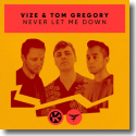Cover: VIZE & Tom Gregory - Never Let Me Down