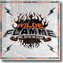 Cover:  Wilde Flamme - Engel, Retter und Helden