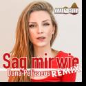 Cover:  Dana Pelizaeus - Sag mir wie (Nur So! Remix)