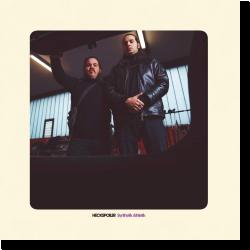 Cover: Heckspoiler - Synthetik Athletik