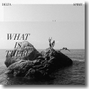 Cover:  Delta Spirit - What Is There
