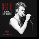 Cover: David Bowie - Ouvrez Le Chien (Live Dallas 95)