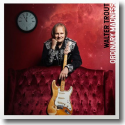 Cover:  Walter Trout - Ordinary Madness