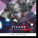 true. echte Musik feat. Martin Perkmann - Sterne