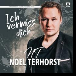 Cover: Noel Terhorst - Ich vermiss dich