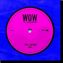Cover: Zara Larsson feat. Sabrina Carpenter - WOW (Remix)