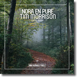 Cover: Nora en Pure feat. Tim Morrison - Come away