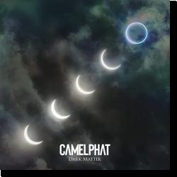 Cover: CamelPhat - Dark Matter