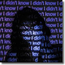 Cover: Decco feat. James Gillespie - I Didn't Know (LIZOT Remix)